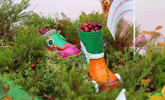 Гастрономический фестиваль «Клюквенный сок